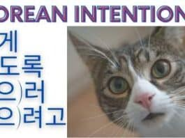 intention in korean
