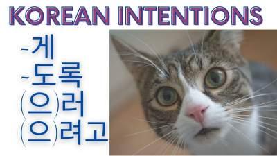 intention in korean