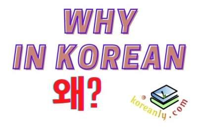 Learn WHY in Korean language (formal/informal) – Wae (왜)?